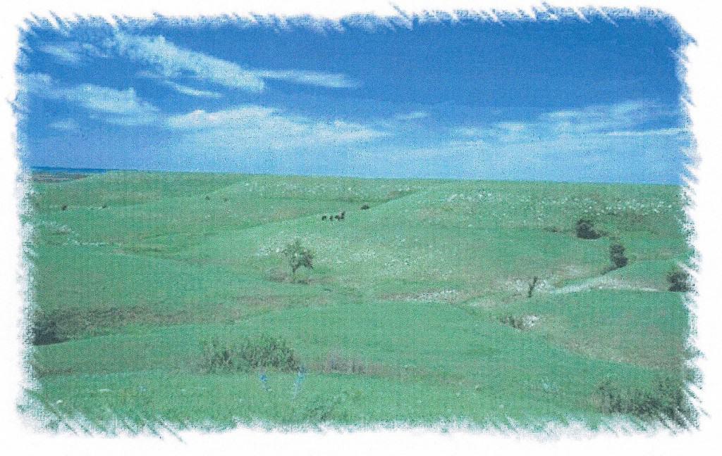 Flint Hills landscape_44