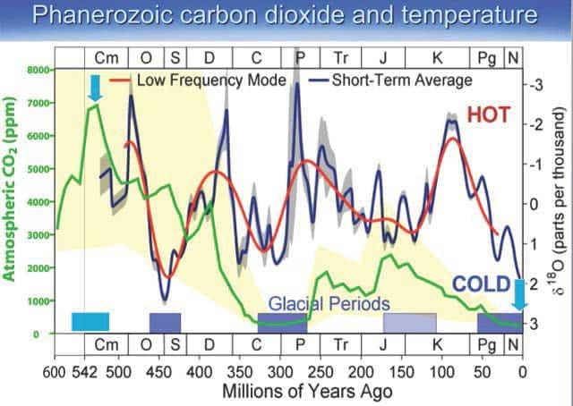 Phanerozoic temperature variations